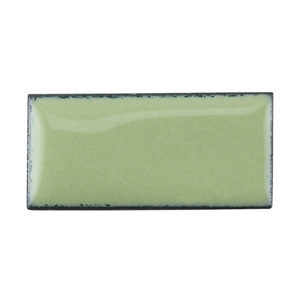 Medium Enamel Opaque Lichen Green