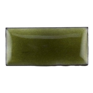 Medium Enamel Transparent Olive