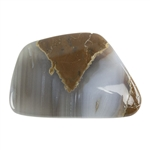 Natural Thunderegg Agate Gemstone - Cabochon Freeform 31mm x 37mm Pkg - 1
