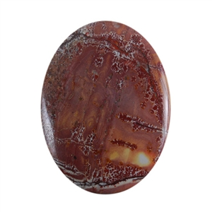 Sonora Dendritic Rhyolite Jasper Gemstone - Oval Cabochon 30mm x 40mm - Pak of 1