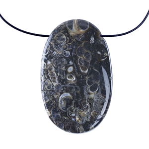 Turritella Agate Gemstone - Freeform Pendant 28mm x 45mm