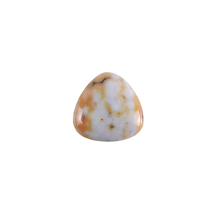 Ocean Jasper Gemstone - Trillion Cabochon 16mm - Pak of 1