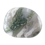 Tree Agate Gemstone - Freeform Cabochon 29mm x 36mm Pkg - 1