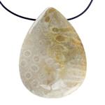 Fossil Coral Gemstone - Pear Pendant 26mm x 35mm