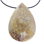 Fossil Coral Gemstone - Pear Pendant 27mm x 39mm