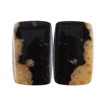 Fossil Palmwood - Rectangle Cabochon Pair 15mm x 25mm - Matched Pair