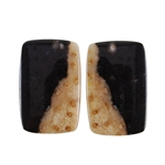 Fossil Palmwood - Rectangle Cabochon Pair 16mm x 24mm - Matched Pair