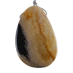 Petrified Palmwood - Pear Pendant 33mm x 50mm - Pak of 1