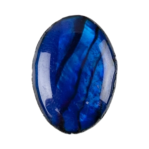 Blue Paua Abalone Shell Gemstone - Cabochon Oval 10x14mm - Pak of 5