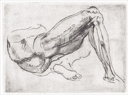 After Michelangelo Study of Legs for a Reclining Figure