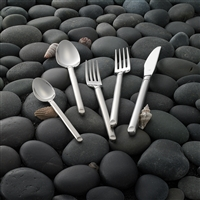 20 Piece Set - Graphite 18/10 Flatware