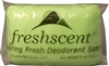 Freshscent Spring Fresh Deodorant Soap - 5oz