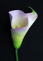 Natural Touch Calla Lily Lilac Stem