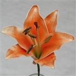 Natural Touch Oriental Lily Stems