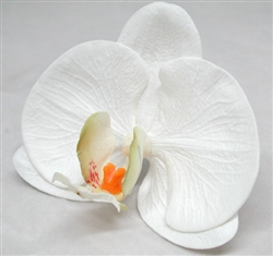 Natural Touch Phalaenopsis Orchid Stems