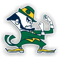 Notre Dame Fighting Irish NCAA 12 Car Magnet""