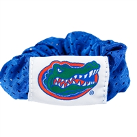 Florida Gators NCAA Hair Twist