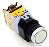 YC-P22PMA-IFW-6 ILLUMINATED PUSH BUTTON