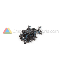 Lenovo 11 100e Chromebook Screw Kit - 5S10R07024