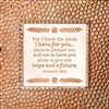 Jeremiah 29:11 Touch of Vintage Copper frame Tabletop Christian Verses - 7 x 7