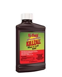 Super Concentrate Killzall Weed & Grass Killer (8 oz)