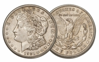 Morgan Silver Dollar - our Choice of Date 1921 and Earlier