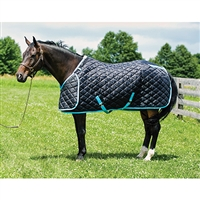 Hug Quilted Stable Blanket, 420 Denier, 300 grams insulation, Black body/Lt Blue trim