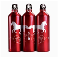 Sports Bottles, 26 oz, Red Canter