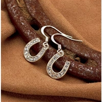 Rhinestone Dangle Horseshoe Earrings, Clear