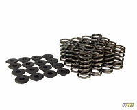 mountune Valve Spring Set (16) Single- 1.6L EcoBoost