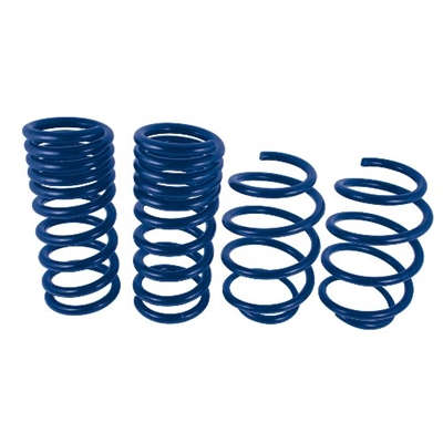 Ford Performance Street Lowering Springs - Mustang 2015-2016