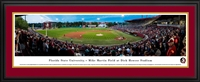 Florida State Seminoles - Mike Martin Field At Dick Howser Stadium
