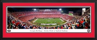 Georgia Bulldogs - Sanford Stadium Panoramic