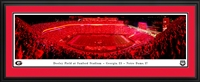 "Georgia Bulldogs - Sanford Stadium ""Red Lights"" Panoramic"