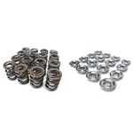 Skunk2 Racing Pro XP Series Valve Spring and Titanium Retainer Kit 1988-2001 Honda/Acura B16A-B, B17A, B18C1-5 1.6L-1.8L DOHC VTEC