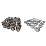Skunk2 Racing Pro XP Series Valve Spring and Titanium Retainer Kit 2002-2008 Honda/Acura K20A-Z,K24A 2.0L/2.4L DOHC i-VTEC