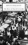 Rise of David Levinsky, Challenges of the New World in the 20th Century