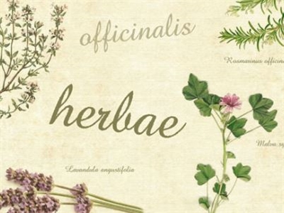 Introduction to Herbal & Natural Remedies for Animals