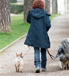 Professional Dog Walker - Diploma