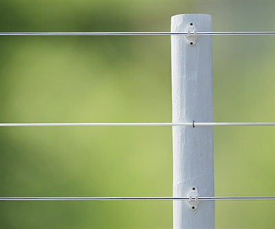 White Lightning Single Strand Coated Horse Fencing
