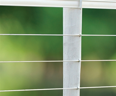 PolyPlus Single Strand Coated Horse Fencing