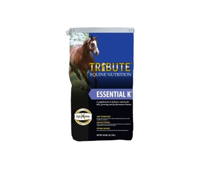 Tribute Essential K
