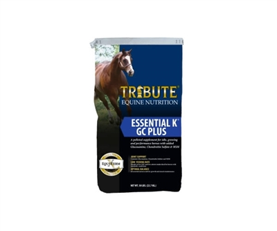 Tribute Essential K GC Plus