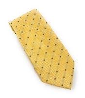 Honey Gold, Brown & Silver Silk Neck Tie Set DLT025