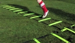 2 Metre Agility Ladder