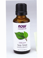 TEA TREE OIL 1OZ / NOW