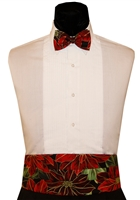 Good Tidings Cummerbund & Bow Set