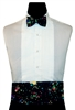 Rainbow Gold Constellations Cummerbund & Bow Set
