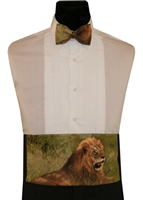"""Nature Study"" Lion Cummerbund & Bow"
