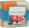 Herbal Gift Set - Citrus Collection Candles